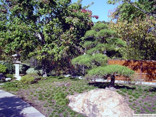Japanese Friendship Garden Balboa Park San Diego