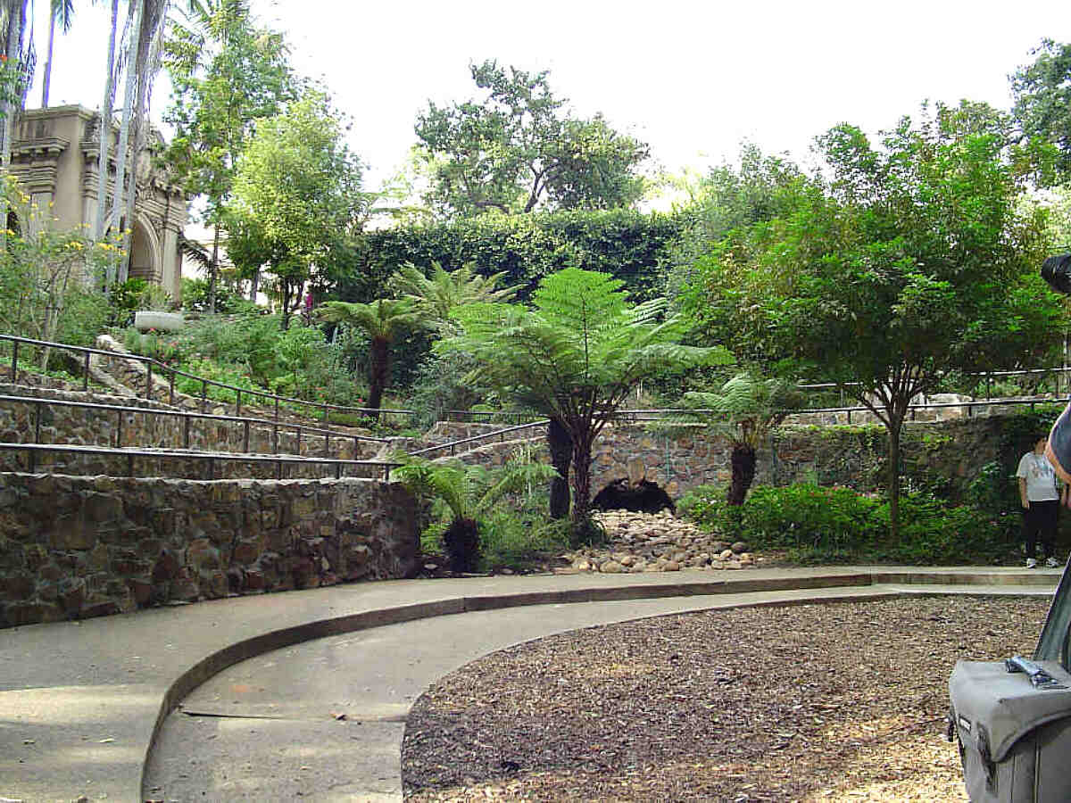 Zoro Butterfly Gardens Of Balboa Park